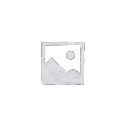 Trapezschiene C-Profil 42/30